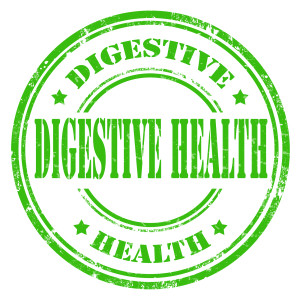 Grunge rubber stamp with text Digestive Health,vector illustration