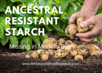 Ancestral Resistant Starch
